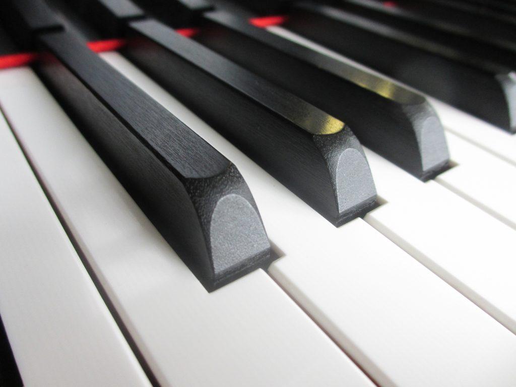 pianostemmer Leiden
