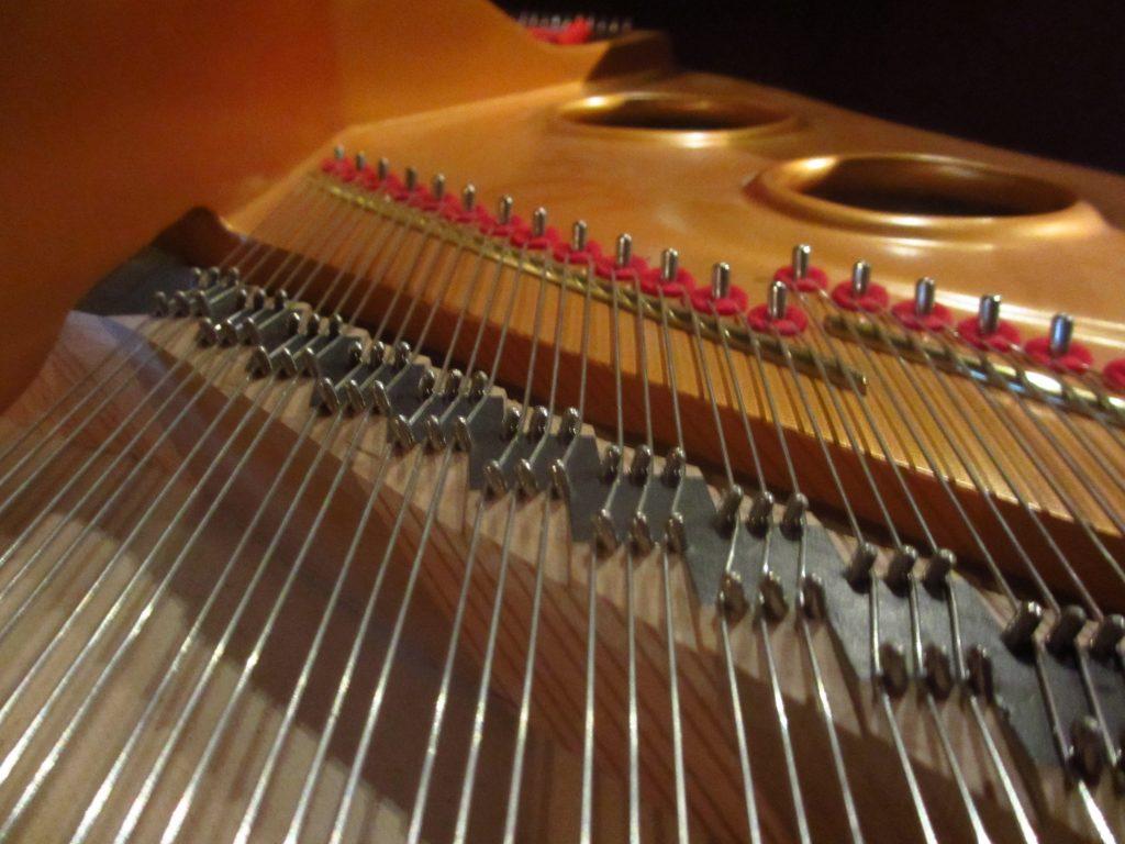 pianostemmer haarlemmermeer
